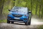 Opel Grandland X 1.6 Diesel - Deutscher Bruder