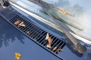 5x – Tipps für das Autofahren im Herbst - Sicher durch die dunkle J...