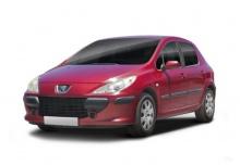 Peugeot 307 110 Automatik (2007-2007) Front + links