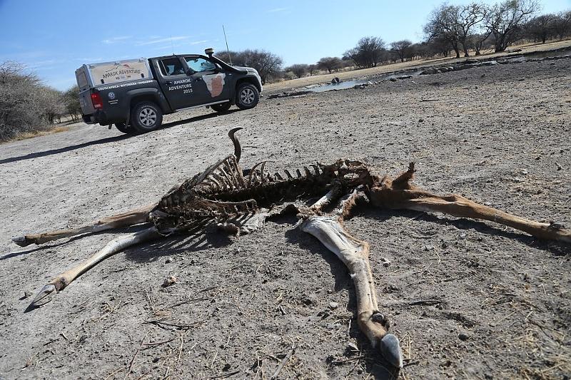 Quer durch die Kalahari Wüste - Unterwegs in der Todeszone