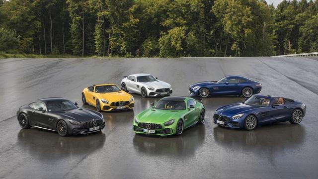 Mercedes-AMG GT  - Die Familie wächst