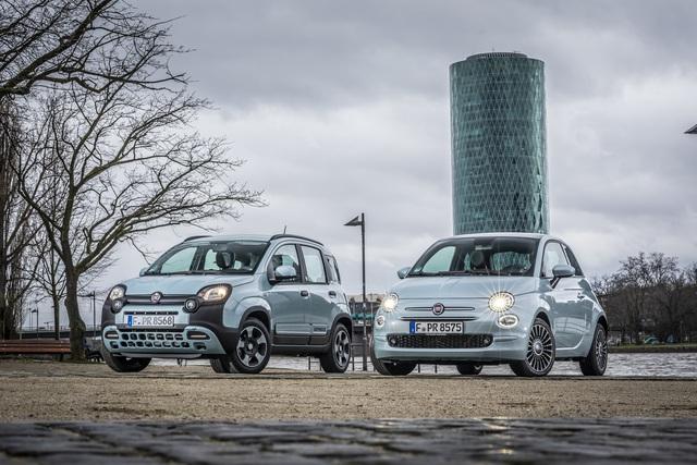 """Fiat 500 Hybrid und Panda Hybrid """"Launch Edition""""  - Zum Marktstart einen Baum pflanzen"""