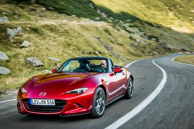 Fünf Autos für maximal 31.130 Euro - Komplette Durchschnittstypen