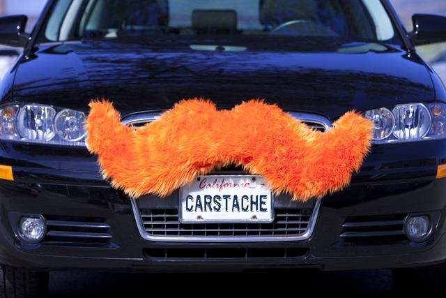 Automobiler Gesichtsschmuck - Schnurrbart für den Kühlergrill