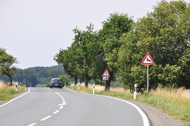 Ratgeber: Achtung Wildwechsel - Im Herbst besonders auf Rehe achten