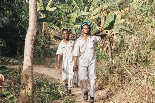 Panorama: Grasesel Made in Ghana und Kiel - Hilfreiches Naturprodukt