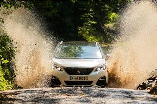 Peugeot 3008 Hybrid4 und Opel Grandland X Hybrid 4 - Teilzeitstromer