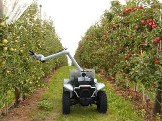 Roboter-Quad von Honda  - Kleiner Helfer für Arbeit und Notfall