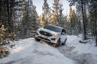 Fahrbericht: Ford Edge -   Schlauer, schöner, schneller