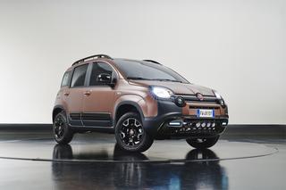 Fiat Panda Trussardi - Kaffeebraun mit Akzenten