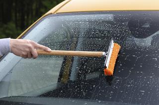 Ratgeber: Autopflege im Sommer - Schnell weg mit dem Fliegendreck