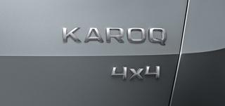 Skoda Karoq - Es gibt doch keinen Yeti (mehr)