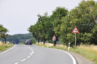 Ratgeber: Vorsicht Wildwechsel  - Wildschweine und Rehe stellen ihr...